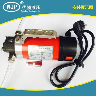 长期批发 220V低噪音抽油泵电动 柴油机油输油泵