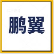 广州鹏翼贸易有限公司